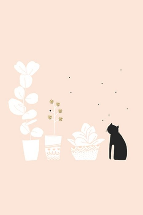 Print On the Balcony - Black Cat and hite Plants pink Background gildings