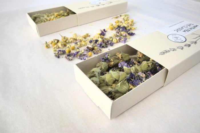 NEW BLENDS - Mini Chamomile or Violet