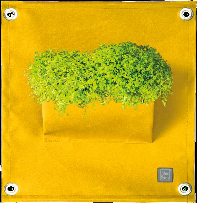 The Green Pockets® AMMA Yellow