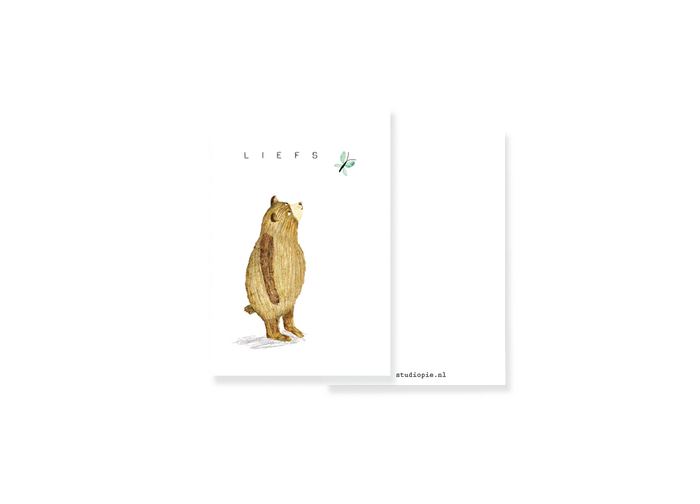 mini giftcard bear and butterfly liefs