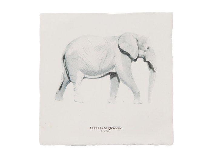 Rebellenclub x Lisa Tile - Elephant