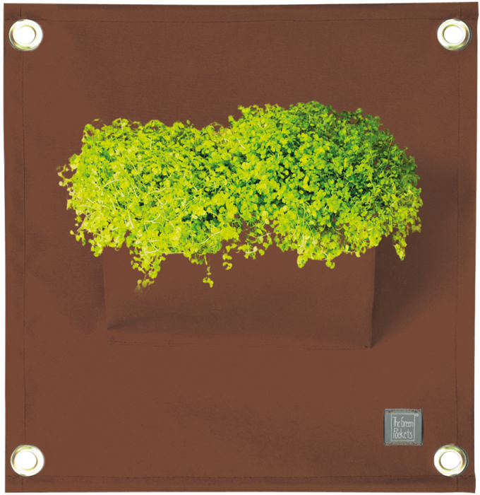 The Green Pockets® AMMA Brown