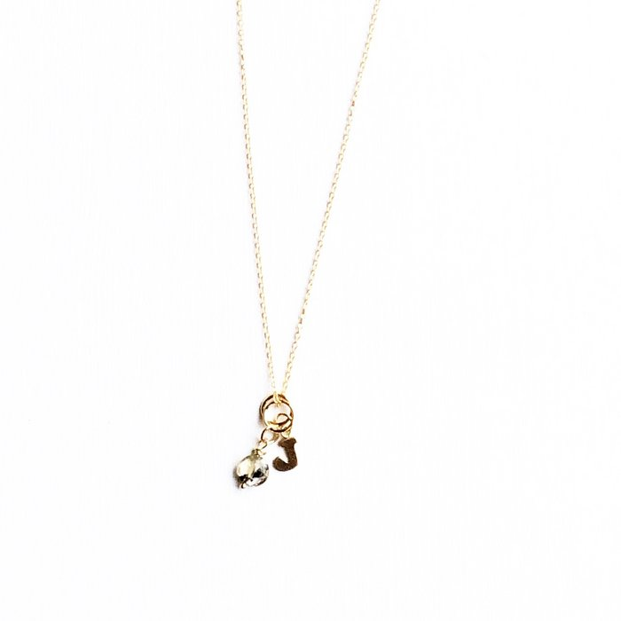 Mix & Match your birthstone and initial necklace
