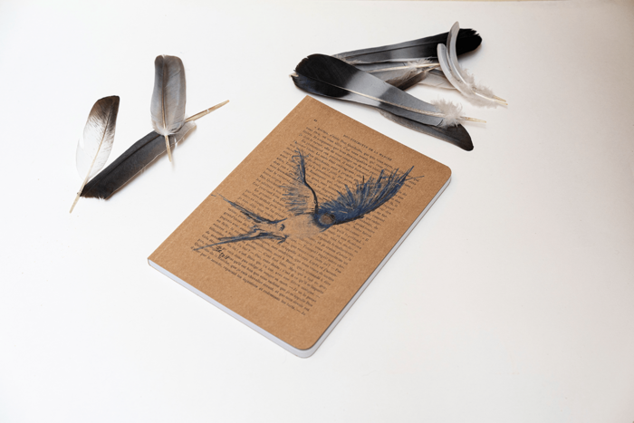Notebook - Swallow
