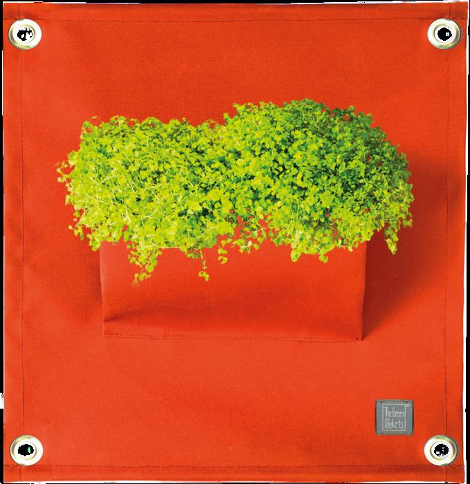 The Green Pockets® AMMA Orange