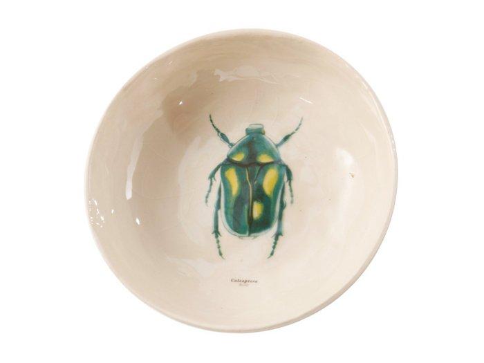 Rebellenclub X Lisa Schaaltje - Beetle